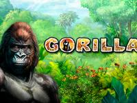 logo gorilla novomatic