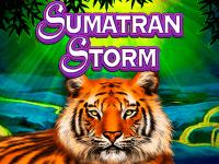 logo sumatran storm igt