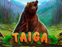 logo taiga playson