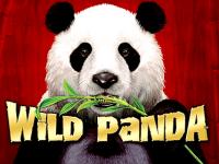 logo wild panda aristocrat